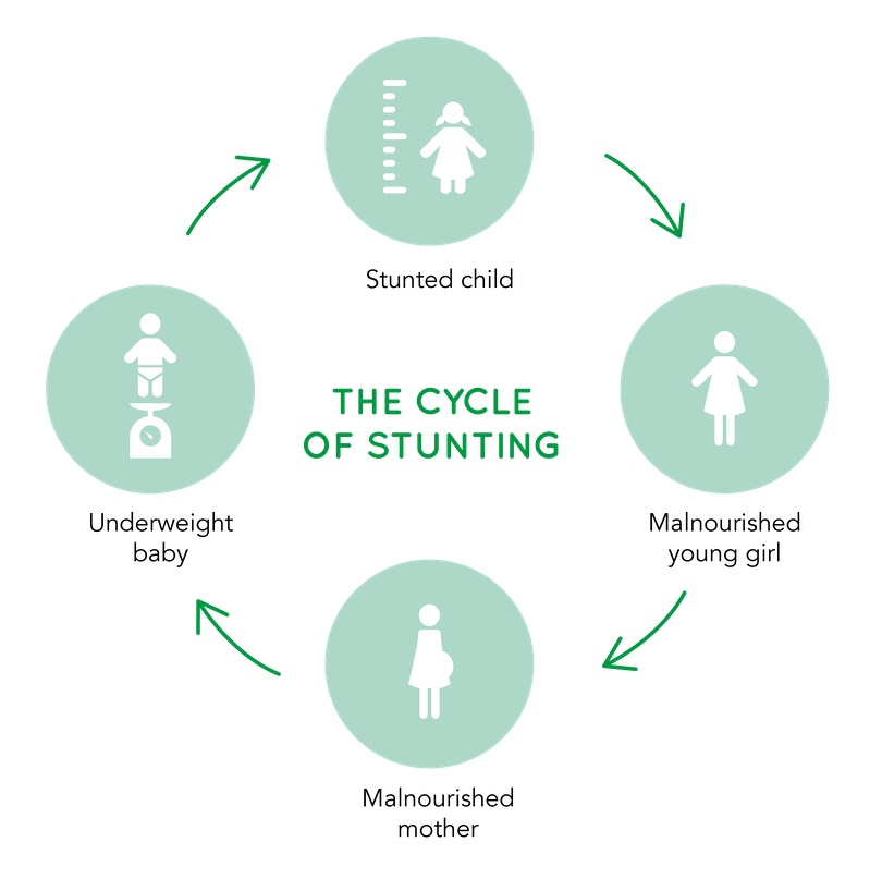 The cycle of stunting